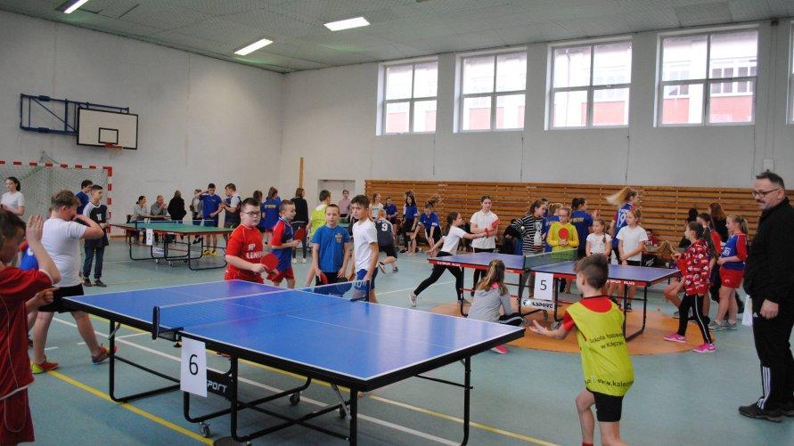 Turniej Tenisa Stołowego Szkół Podstawowych Gminy Dźwierzuty o Puchar Wójta Gminy